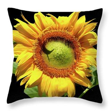 Greenburst Sunflower Throw Pillow