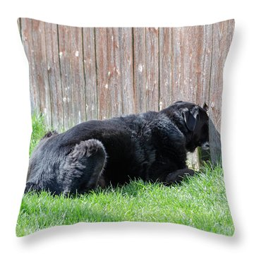 Greener Grass Throw Pillow