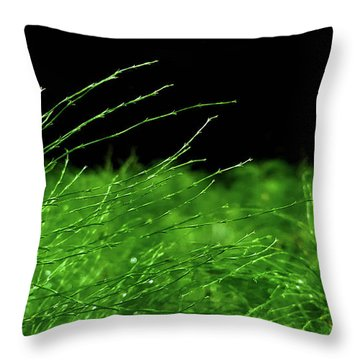 Greener On The Other Side. Throw Pillow