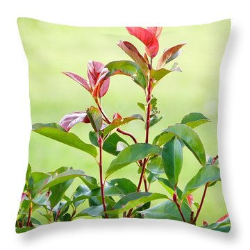 Greenery And Red Throw Pillow