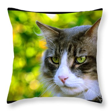 Greeneyes In Forest Throw Pillow by Susanne Still