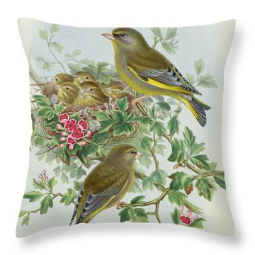Greenfinch Throw Pillow by John Gould