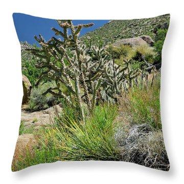 Greening Of The High Desert Throw Pillow