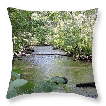 Greenville River Shot Throw Pillow