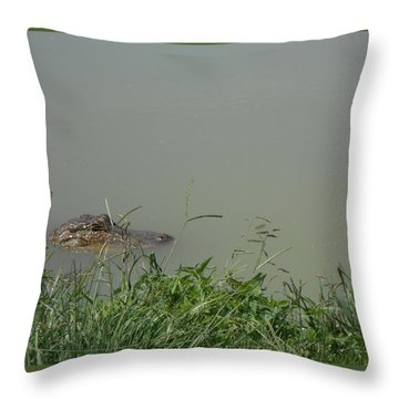 Throw Pillow featuring the photograph Greenwood Gator Farm by Cynthia Powell