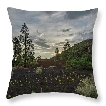 Greet The Day Throw Pillow