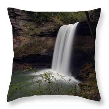 Greeter Falls Throw Pillow