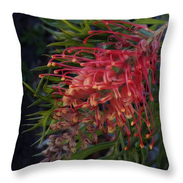 Grevillea Robyn Gordon Throw Pillow