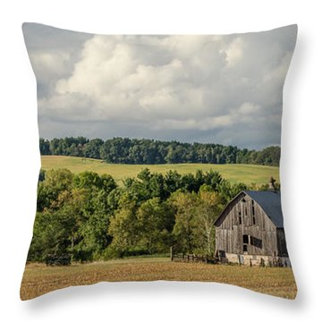 Throw Pillow featuring the photograph Grey Barn by Dan Traun