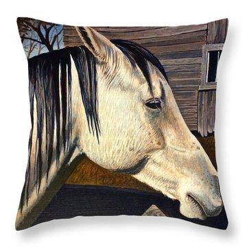 Grey Boy Throw Pillow by Bern Miller