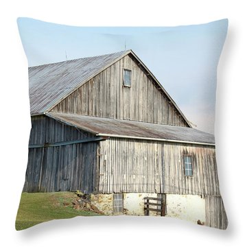 Rustic Barn Throw Pillow