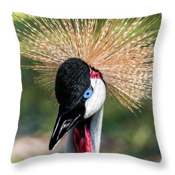Grey Crowned Crane Gulf Shores Al 2041 Throw Pillow