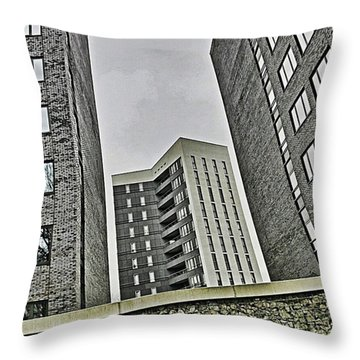 Grey Throw Pillow by Hans Fotoboek