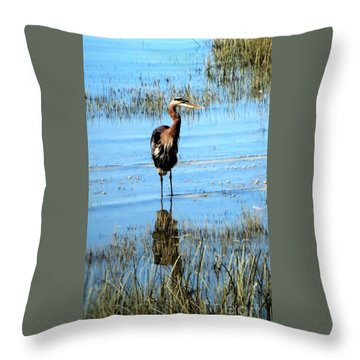 Grey Heron Blue Water Throw Pillow