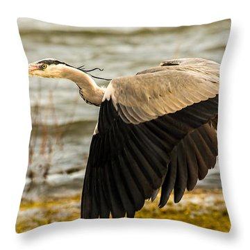 Grey Heron In Flight Throw Pillow