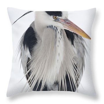 Grey Heron In The Snow Throw Pillow