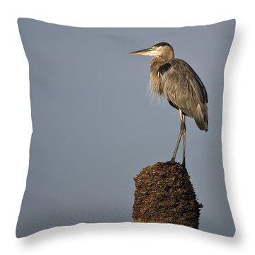 Grey Heron Throw Pillow