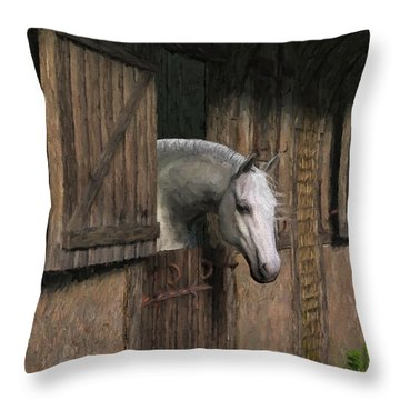 Grey Horse In The Stable - Waiting For Dinner Throw Pillow