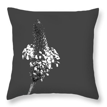 Grey Plaintain Throw Pillow