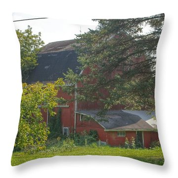 0015 - Grey Road Red I Throw Pillow