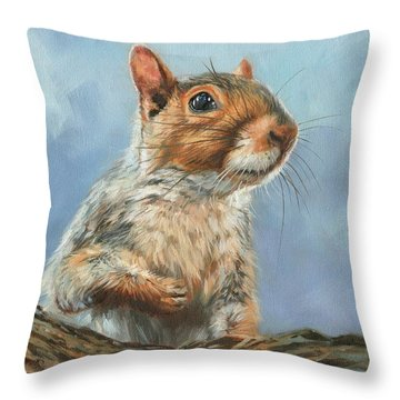 Grey Squirrel Throw Pillow by David Stribbling