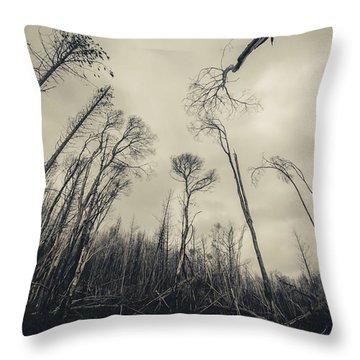 Grey Winds Bellow  Throw Pillow