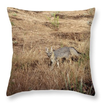 Greyfox1 Throw Pillow