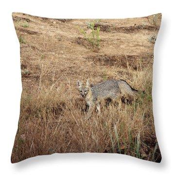 Greyfox6 Throw Pillow