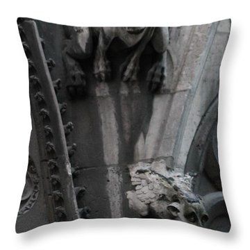Throw Pillow featuring the photograph Griffons by Christopher Kirby