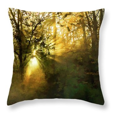 Grings Mill Fog 15-039 Throw Pillow by Scott McAllister