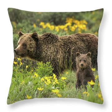 Grizzlies In The Wildflowers Throw Pillow