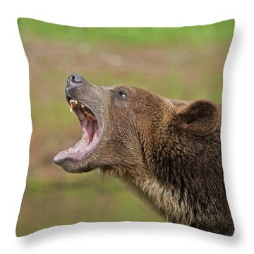 Grizzly Bear Growl Throw Pillow