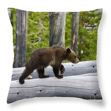 Grizzly Cub Throw Pillow
