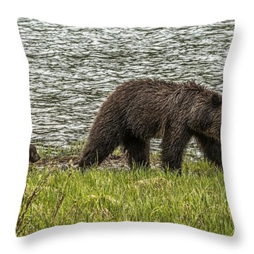 Throw Pillow featuring the photograph Grizzly Family by Yeates Photography