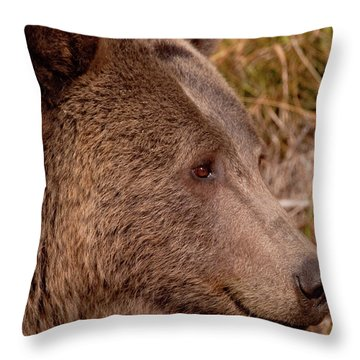 Grizzly Profile Throw Pillow