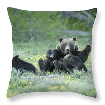 Grizzly Romp - Grand Teton Throw Pillow by Sandra Bronstein