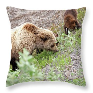Grizzly Sow And Cubs Throw Pillow