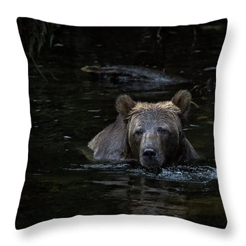 Grizzly Swimmer Throw Pillow