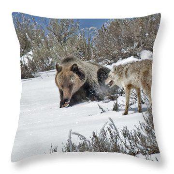 Grizzly With Coyote Throw Pillow