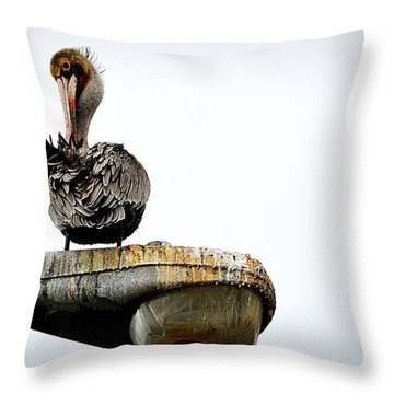 Grooming Time Throw Pillow by AJ Schibig