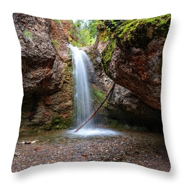 Grotto Falls Throw Pillow