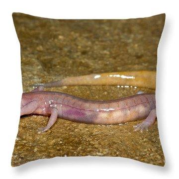 Grotto Salamander Throw Pillow