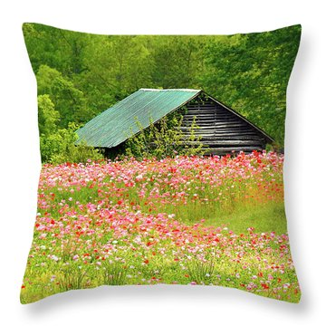 Ground Hog Daze Throw Pillow