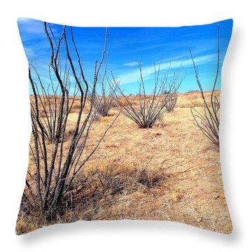 Ground Level - New Mexico Throw Pillow