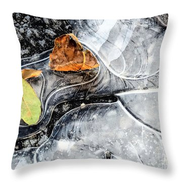Ground Patterns Throw Pillow