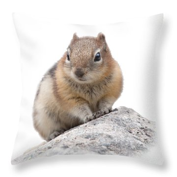 Ground Squirrel T-shirt Throw Pillow