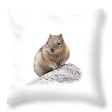 Ground Squirrel T-shirt Throw Pillow