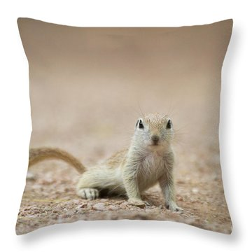 Ground Squirrel I See You Throw Pillow