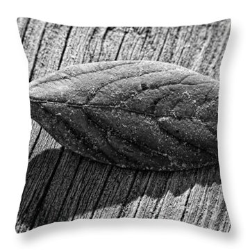 Grounded Throw Pillow by Christopher Holmes