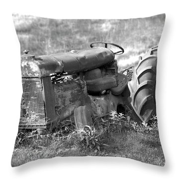 Grounded Throw Pillow by Mike McGlothlen
